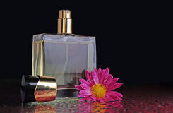 Perfume bottle with a flower. A bottle of perfume with a flower on a table with splashes Royalty Free Stock Image