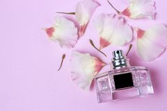 Perfume bottle and flower petals on pink background, top view, toned stock image