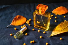 Perfume Bottle and Gold Perfume On a black background royalty free stock image