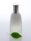 Perfume bottle and green leaf with drops Stock Photo