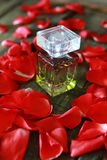 Perfume bottle and petals Stock Image