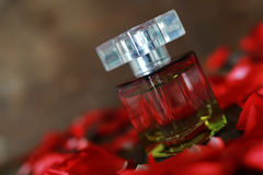 Perfume bottle and petals Royalty Free Stock Images