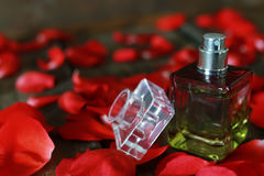 Perfume bottle and petals Royalty Free Stock Photo