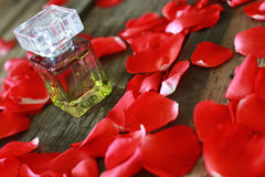 Perfume bottle and petals Stock Photos
