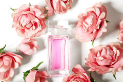 Perfume bottle in pink flower roses. Spring background with luxury aroma parfume. Beauty cosmetic shot Stock Photos