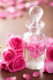 Perfume bottle and pink rose flowers. spa aromatherapy Royalty Free Stock Photo