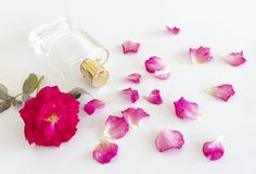 Perfume bottle with rose flower and petals. On white background stock photos