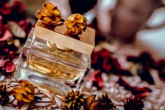 Perfume bottle and rose petals. Beautifl cncept royalty free stock images