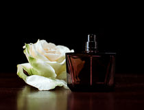 Perfume bottle with white rose Stock Images