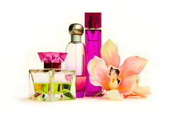 Free Perfume Bottles Stock Photos - 6466593