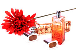 Perfume bottles. Beautiful shot of perfume bottles on white background Royalty Free Stock Image