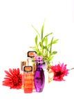 Perfume bottles Stock Images