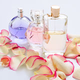 Perfume bottles with flower petals on light background. Perfumery, fragrance collection. Women accessories. Royalty Free Stock Photography