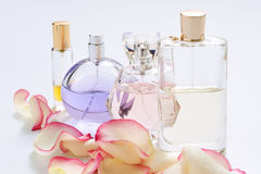 Perfume bottles with flower petals on light background. Perfumery, fragrance collection. Women accessories. Perfume bottles with flower petals on light Royalty Free Stock Image