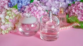 Perfume bottles and hydrangea flowers Royalty Free Stock Photos