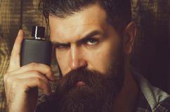 Perfume or cologne bottle man with beard on serious face. Perfume or cologne bottle bearded man or brutal caucasian hipster with long beard and moustache on stock photos