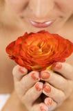 Perfume de uma Rosa fotos de stock royalty free