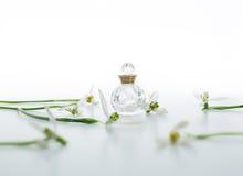 Perfume e snowdrop Fotografia de Stock Royalty Free