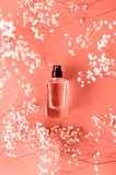 Perfume el tarro con el gypsophila alrededor del color coralino fotografía de archivo