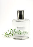 Perfume flask with cologne. On white background stock image