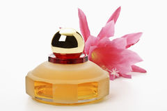 Perfume flask with phyllocactus flower Royalty Free Stock Photos