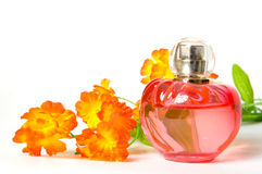 Perfume and flower isolated Royalty Free Stock Photos