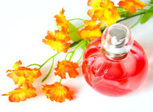 Perfume and flower isolated royalty free stock photo