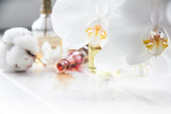 Perfume and flowers cotton and white Orchid on white wooden table. Bottle of perfume oil and flowers cotton and white Orchid on white wooden table Stock Photo