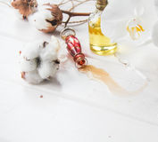 Perfume and flowers cotton and white Orchid on white wooden table. Bottle of perfume oil and flowers cotton and white Orchid on white wooden table Royalty Free Stock Image