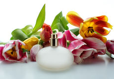 Perfume and flowers Stock Images