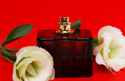 Perfume and  flowers Royalty Free Stock Images