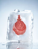Perfume frozen in a piece of ice Royalty Free Stock Photography