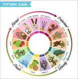 Perfume guide wheel infographic. Aromatic guide wheel for perfume, scent and aroma infographic. Oriental, woody, fresh and flower essenses chart with examples Stock Image