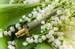 Perfume with lily of the valley aroma Stock Images