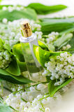 Perfume with lily of the valley aroma Royalty Free Stock Photography