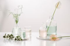Perfume oils concept. Laboratory glassware with infused floral water on table.  stock photography