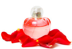 Perfume and petal rose Stock Photography