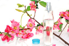 Perfume and rose Royalty Free Stock Images