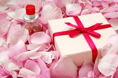 Perfume in rose petals. Bottle of perfume in rose petals and a present box Stock Photos