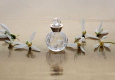 Perfume and snowdrop Royalty Free Stock Photo