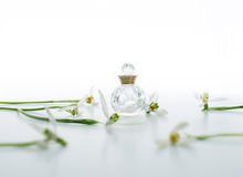 Perfume and snowdrop Royalty Free Stock Photography
