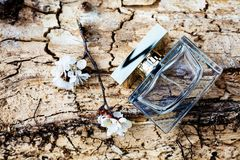 Perfume with tender flowers Royalty Free Stock Photos