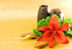 Perfume vermelho do lírio Imagem de Stock Royalty Free