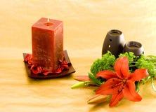 Perfume vermelho do lírio Foto de Stock Royalty Free