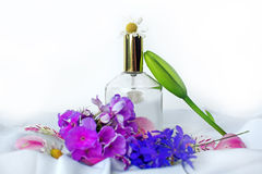 Perfume and wild flowers Royalty Free Stock Photo