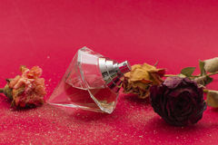 Perfume. A womans perfume on a red background Stock Photos