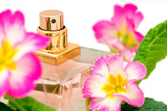 Perfume y flores Imagen de archivo