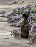 Perfumed herbal oil essence and lavender flowers Royalty Free Stock Image