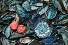Perfumed potpourri background  Royalty Free Stock Images