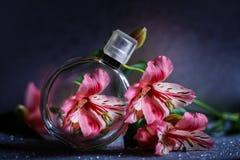 Perfumería, colección de la fragancia imágenes de archivo libres de regalías